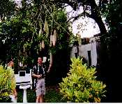 Dad And Billy In Florida Holding Some Kind Of Huge Tree Nut